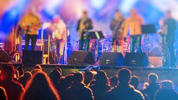 Permalink zu:Musiker